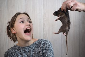 A man's hand shows a rat to a girl