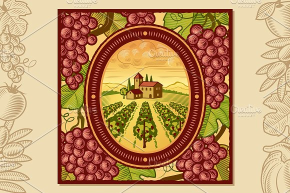 Grapes Harvest Design