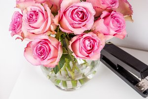 Pink roses desktop office photo