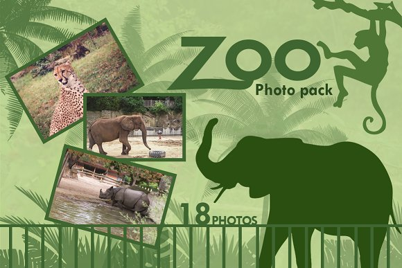 Zoo Photo Pack