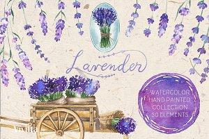 Watercolor Lavender Clipart.