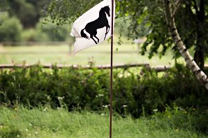 Flag with black horse
