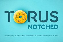 Torus Notched –6 Dynamic Fonts