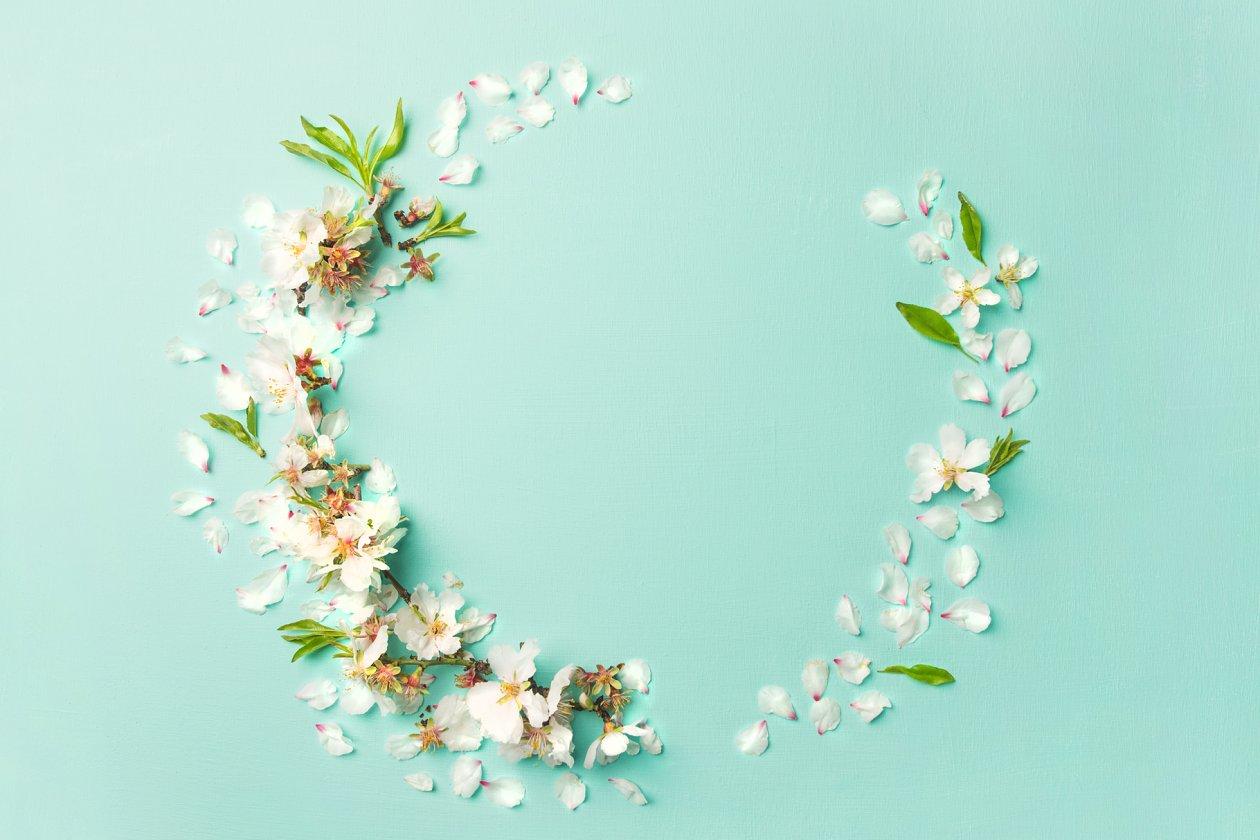 Spring Flowers Layout Nature Photos Creative Market Pro