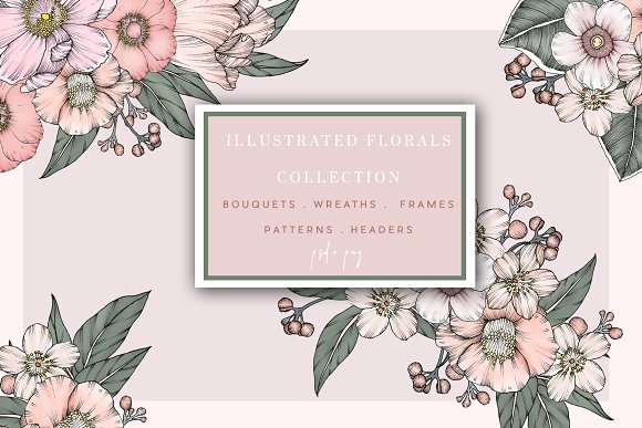 Illustrated Floral Collection