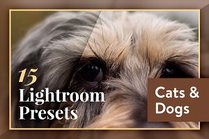 Lightroom Presets - Cats and Dogs