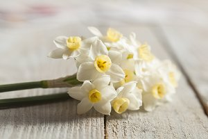 Bunch of white narcissus on wood