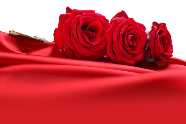 roses on red silk