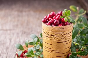 Fresh forest berries and lingonberry