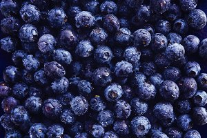 blueberries top down photo