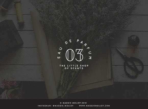 Type Layouts Vol. 4 Text Based Logos in Logo Templates - product preview 5