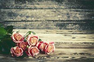 Vintage lovely rose flowers
