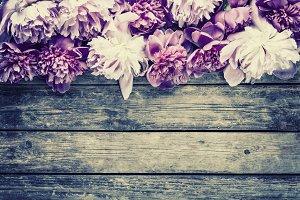 Vintage peony flowers