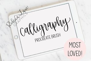 Calligraphy Procreate Brush