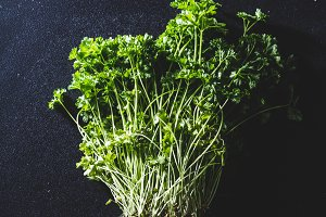 A pot of parsley on a black kitchen
