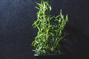 Fresh green rosemary in a black flow