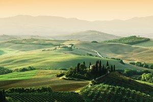 Tuscany landscape at sunrise. Tuscan