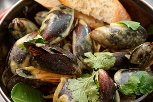 Mussels cooked with curry