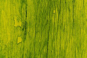 Light Green Wood Background Texture