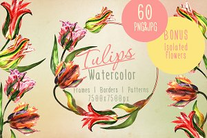 Colorful tulips JPG watercolor set