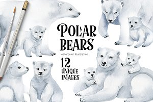 Polar bears-watercolor illustrations