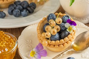 Light fresh crunchy pastry tartlet o