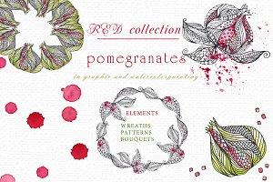 Pomegranates. Graphic & Watercolor