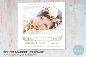 IE024 Spring Marketing Board