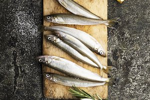 Fresh small sea fish smelt, sardine