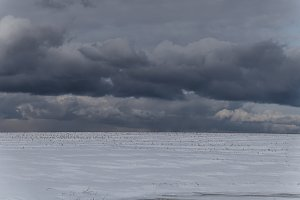 Dark Clouds over Winter Snowy Field
