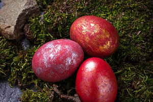Easter painted red eggs on moss