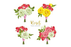 Set collection flowers roses on white background