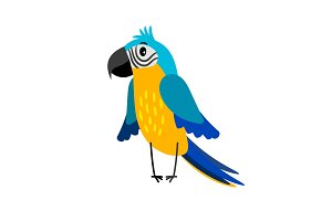 Parrot cartoon bird icon