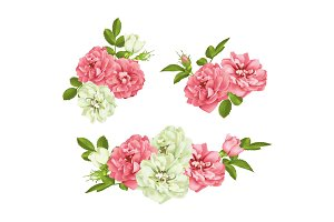 Realistic vector pink rose set. 3d roses