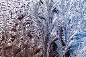 beautiful frosty pattern