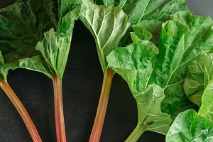 Fresh organic rhubarb on black board