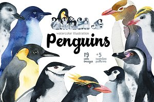 Penguins at the Pole-illustration