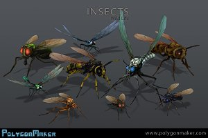 Wild Life - Insects