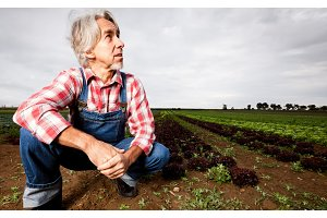 Farmer Sitting In Front Of His Field