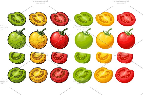 Set Of Hand Drawn Tomatoes Branch Whole And Slice