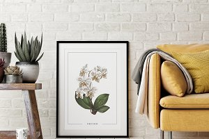 Poster with Orchid flower Watercolor