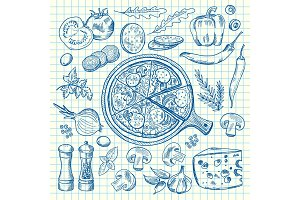 Vector sketched contoured italian pizza ingridients on notebook cell sheet