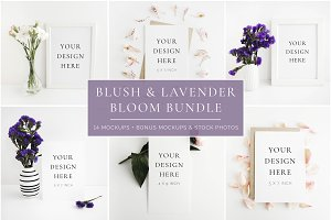 Blush & Lavender Bloom Bundle
