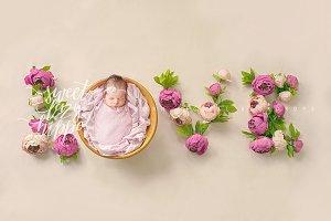LOVE - Newborn Digital Backdrop
