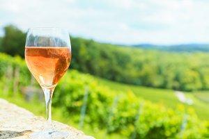 Wine Glass With Vineyard