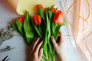 Making bouquet of tulips.