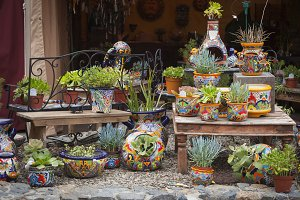 Colorful Shop of Decorative Ceramics