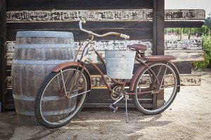 Old Rusty Antique Bicycle and Wine B
