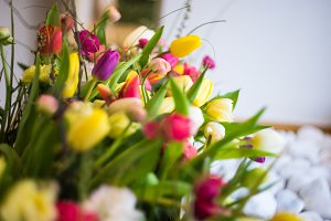 Spring flowers in a bouquet
