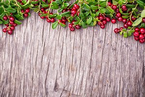 Branches of ripe red juicy cranberries on the texture wooden dark background